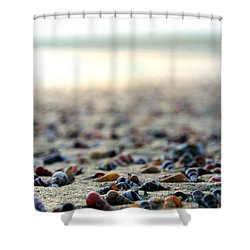 Sea Shells By The Sea Shore Shower Curtain by Kaleidoscopik Photography
