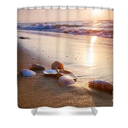 Sea Shells On Sand Shower Curtain