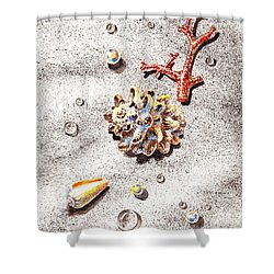 Sea Shells Pearls Water Drops And Coral Shower Curtain by Irina Sztukowski