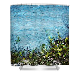 Shower Curtain featuring the digital art Sea Shore 1 by David Lane