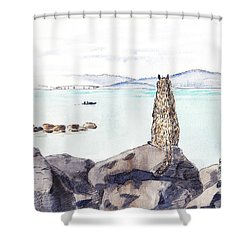 Sea Squirrel Shower Curtain