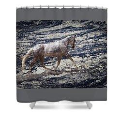 Sea Stallion Shower Curtain