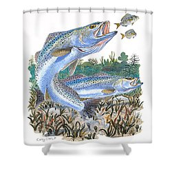 Sea Trout Shower Curtain by Carey Chen