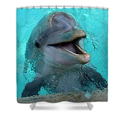 Shower Curtain featuring the photograph Sea World Dolphin by David Nicholls