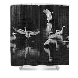 Seabeck Herons Shower Curtain