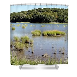 Shower Curtain featuring the photograph Seagrass by Ed Weidman