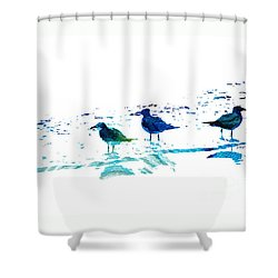 Seagull Art - On The Shore - By Sharon Cummings Shower Curtain by Sharon Cummings