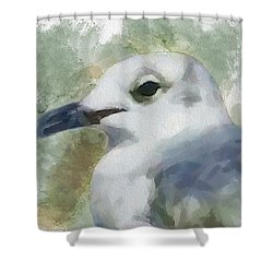 Shower Curtain featuring the painting Seagull Closeup by Greg Collins