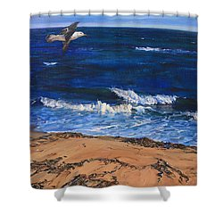 Seagull Flying Along The Surf Shower Curtain