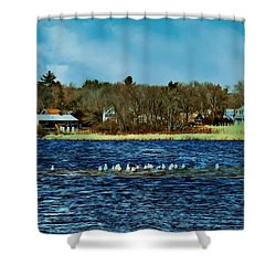 Seagull Gathering Shower Curtain by Barbara S Nickerson