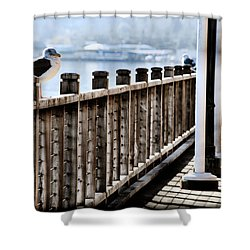 Seagull On The Boardwalk Shower Curtain by Sally Bauer