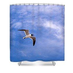 Shower Curtain featuring the photograph Seagull by Sennie Pierson