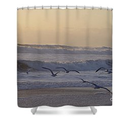 Seagull Sunrise Shower Curtain