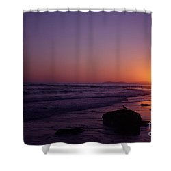 Seagull Watching The Sunset Carpinteria State Beach Shower Curtain