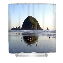 Seagulls And A Surfer Shower Curtain by Will Borden