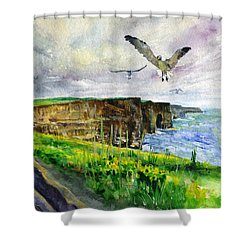 Seagulls At The Cliffs Of Moher Shower Curtain
