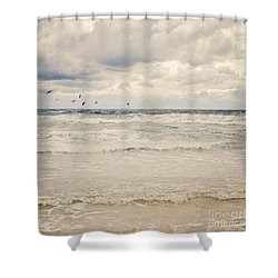 Seagulls Take Flight Over The Sea Shower Curtain