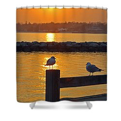 Seaguls At Sunset Shower Curtain