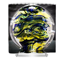Seahawks Glass -  Solid Glass Sculpture  Shower Curtain by David Patterson