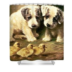 Sealyham Puppies And Ducklings Shower Curtain by Lilian Cheviot