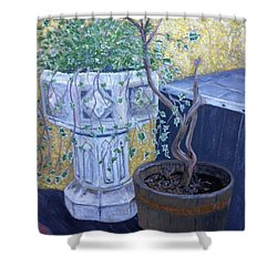 Shower Curtain featuring the painting Sean's Planter by Brenda Brown