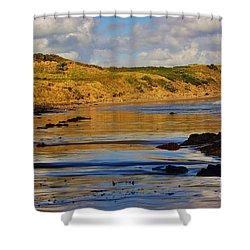 Seascape At Phillip Island Shower Curtain by Blair Stuart