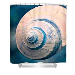 Seashell In Pastel Shower Curtain