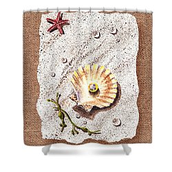Seashell With The Pearl Sea Star And Seaweed  Shower Curtain by Irina Sztukowski
