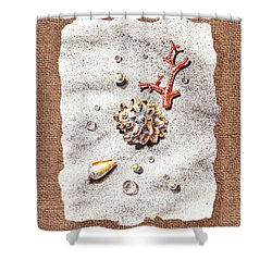 Seashells Coral Pearls And Water  Drops Shower Curtain by Irina Sztukowski