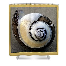 Seashells Spectacular No 3 Shower Curtain