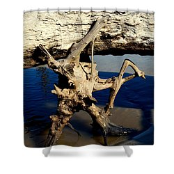 Seashore Atlas Shower Curtain