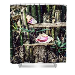 Seaside Display Shower Curtain by Melanie Lankford Photography