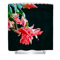 Seasonal Bloom Shower Curtain