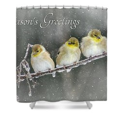 Season's Greetings Shower Curtain by Lori Deiter