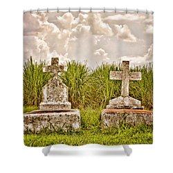 Seasons Of Life Shower Curtain by Scott Pellegrin