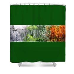 Seasons Of The Aspen Shower Curtain by Carol Cavalaris