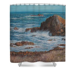 Seaspray Shower Curtain by Valerie Travers