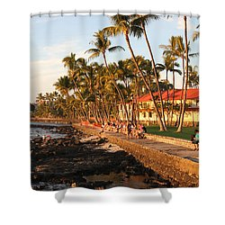 Seawall At Sunset Shower Curtain by Denise Bird