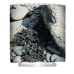 Seaweed And Rocks  Shower Curtain