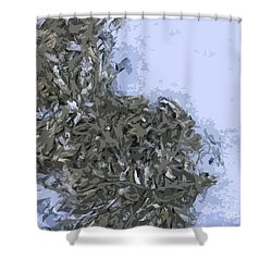Seaweed Shower Curtain by Carol Lynch