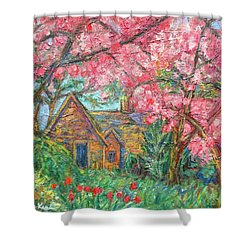 Secluded Home Shower Curtain