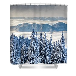 Second Level Shower Curtain by Evgeni Dinev