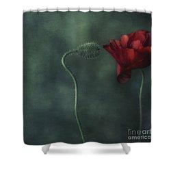 Secret Affair Shower Curtain by Priska Wettstein