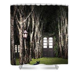 Secret Forest Dwelling Shower Curtain by Nirdesha Munasinghe