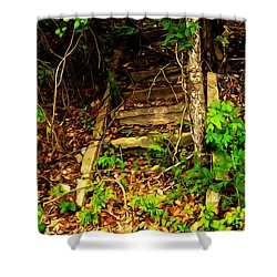 Shower Curtain featuring the photograph Secret Stairway by Bartz Johnson