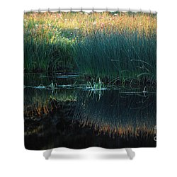Sedges At Sunset Shower Curtain