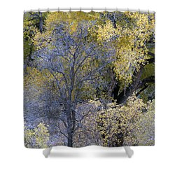 Sedona Fall Color Shower Curtain