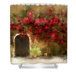 The Bougainvillea's Of Sedona Shower Curtain