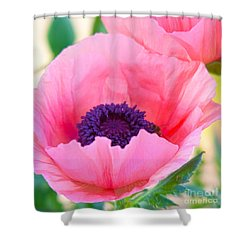 Seductive Poppy Shower Curtain
