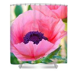 Seductive Poppy Shower Curtain